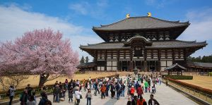 things-to-do-in-nara-japan